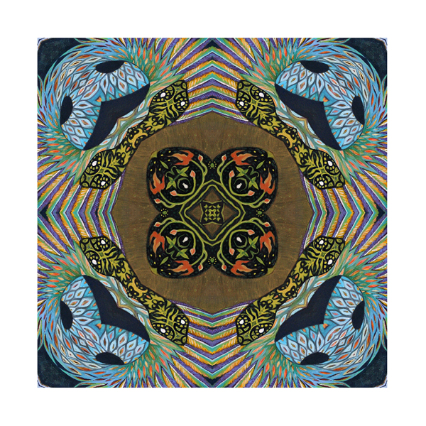 snakes, feathers, geometric patterns, mirror imagery