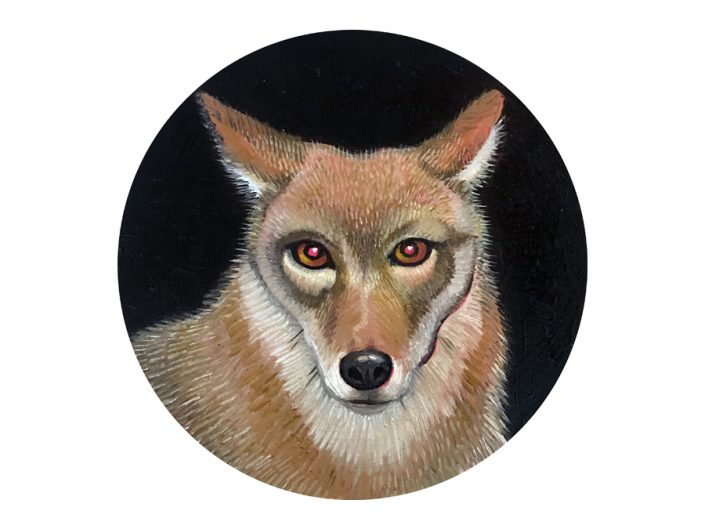 coyote, portrait, oil painting, circle