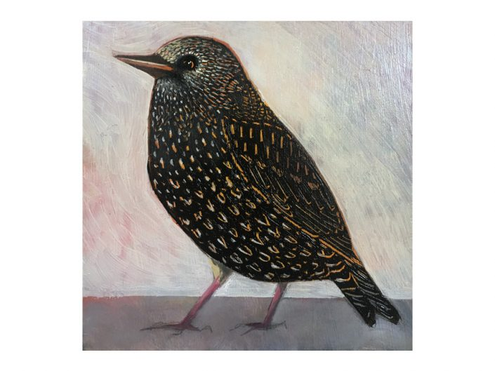 starling, black bird, oil painting