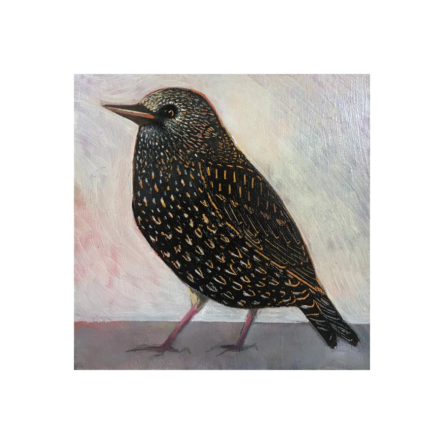 starling, black bird, oil painting