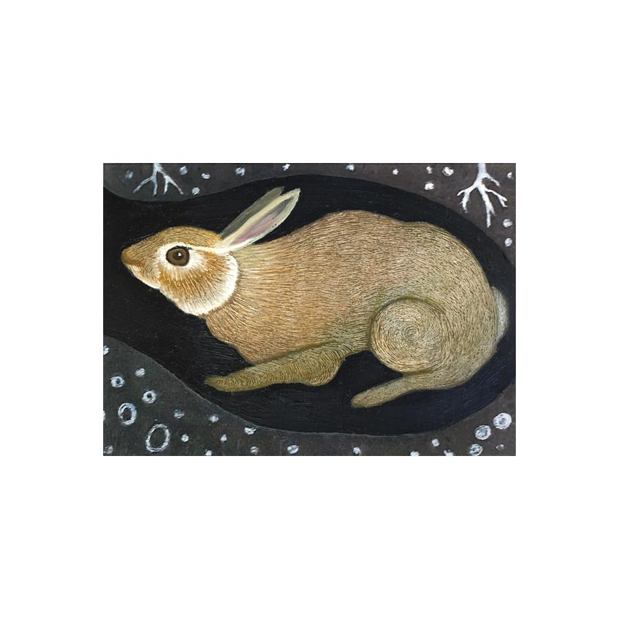 rabbit, den, earth, nature