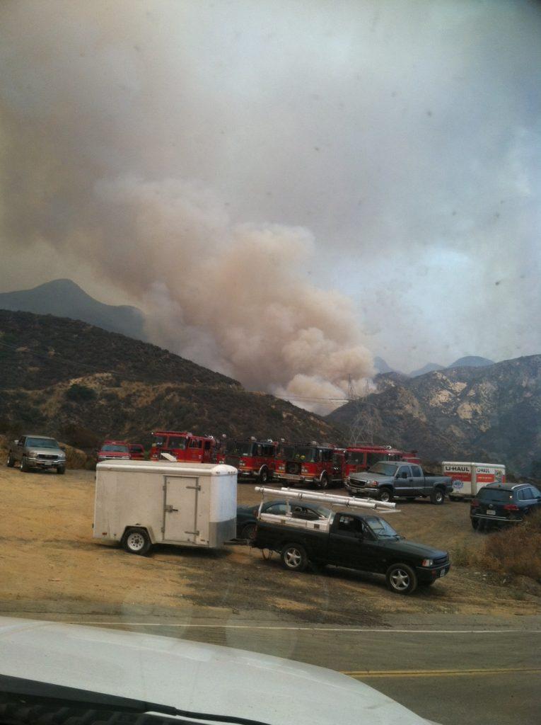 animal evacuation sand fire