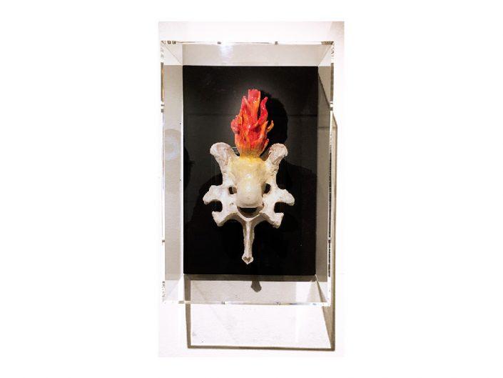 cow bone with epoxy flame assemblage in plexiglass box