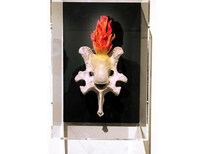 cow-bone-assemblage-plexiglass-box-flames