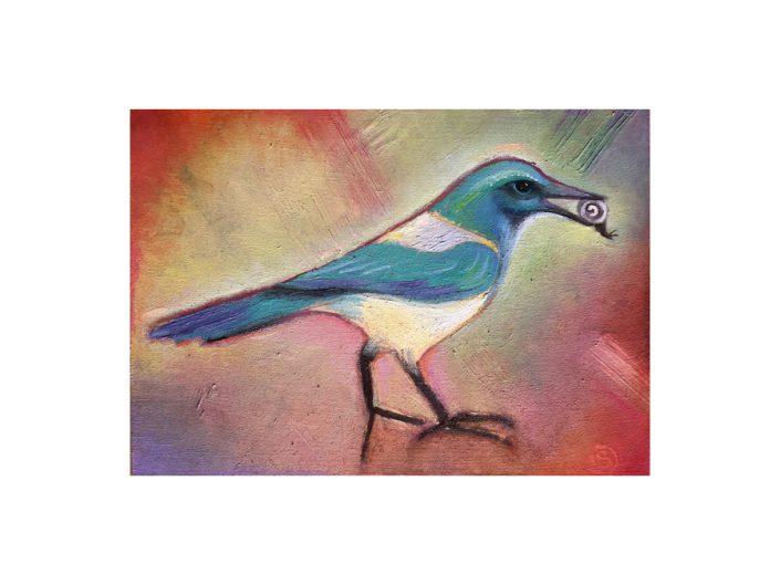 bird-jay-snail